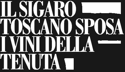 header-sigaro-toscano-1
