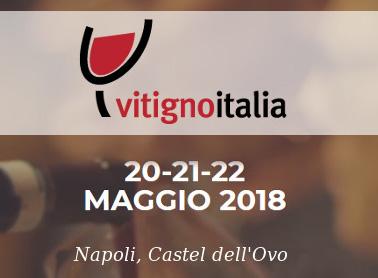 Vi aspettiamo <br>a Vitigno Italia 2018